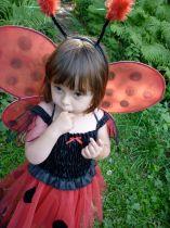 LadybirdVicki2