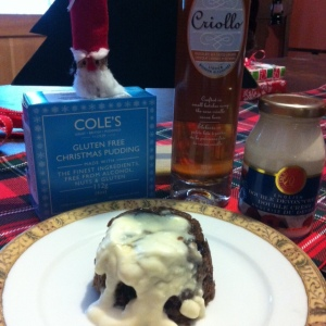 117 g Single Cole's Gluten Free Christmas Pudding